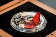 1000 Schillings 2016 Tanzania - Cymothoe Hobarti - 3D Schmetterling