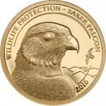 500 Togrog 2016 Mongolei - Wildlife Protection - Saker Falcon  Au