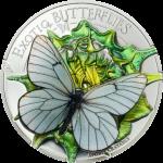 Vorverkauf! 500 Togrog 2017 Mongolei - APORIA CRATAEGI - 3D Schmetterling