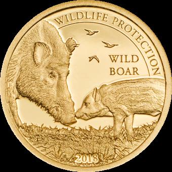 1000 Togrog 2018 Mongolei - Wildlife Protection - Wildschwein - Sus Scrof Au
