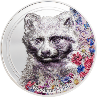 500 Togrog 2020 Mongolia - Woodland Spirits – Raccoon Dog - Marderhund