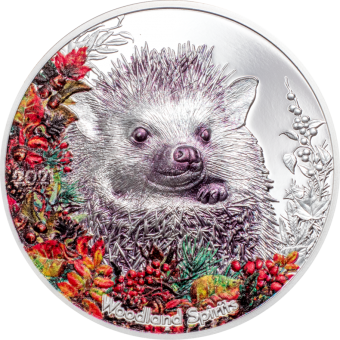 500 Togrog 2021 Mongolia - Woodland Spirits – Hedgehog