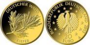 20 Euro 2013 - Deutscher Wald - Kiefer